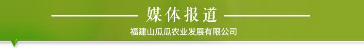详情页企业经营资质_03.jpg
